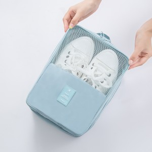 show picture of shoe carrying case